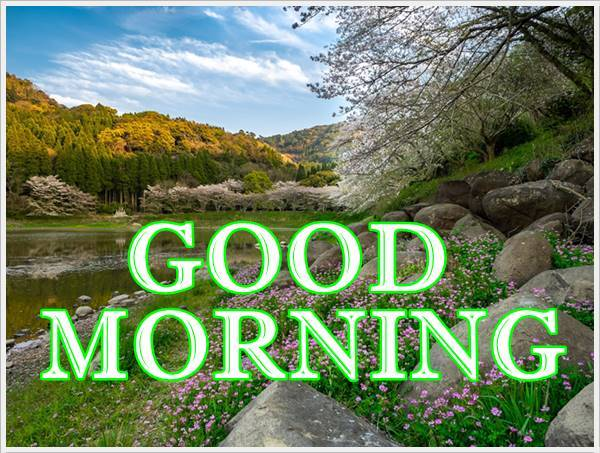 Good Morning Photo HD Images Pic Pictures With Quotes