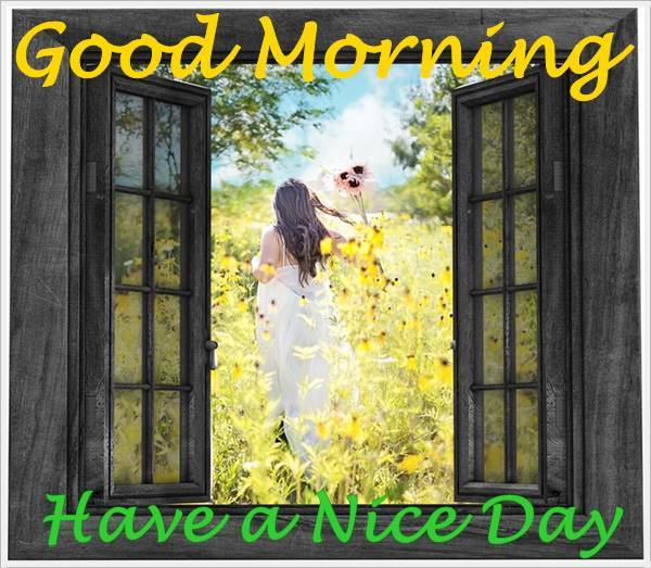 Good Morning Photo HD Images Pictures Wallpapers Pic Nature For Fb