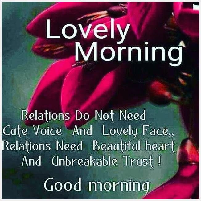 Good Morning Photo HD Images Pic Pictures Wallpaper Letest For Free
