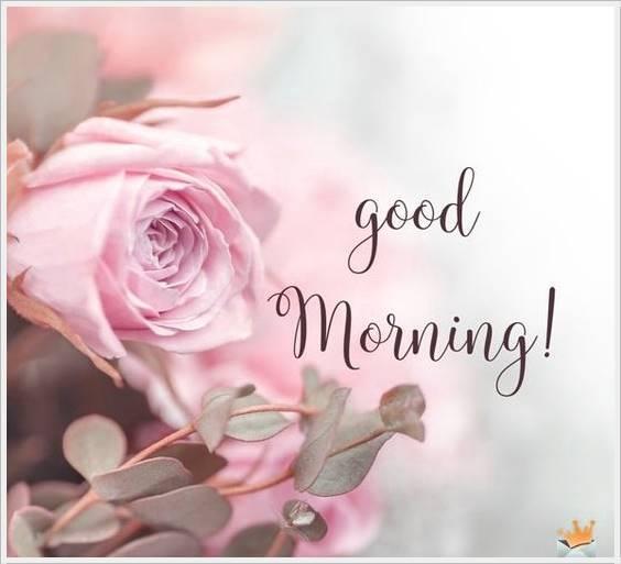 good morning photo hd52