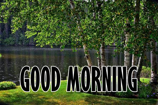 Good Morning Nature Images Photos HD 36
