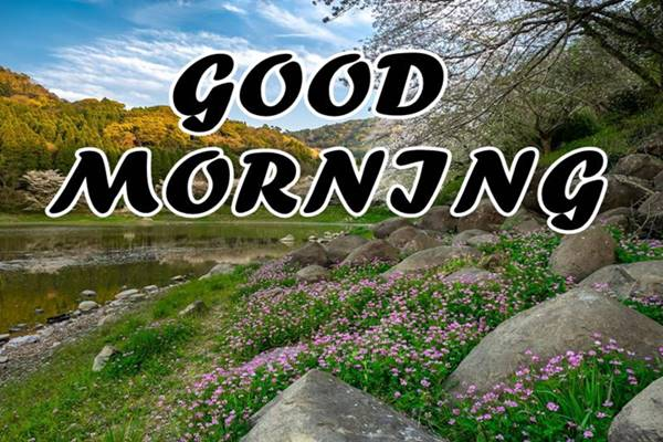 Good Morning Nature Images Photos HD 20