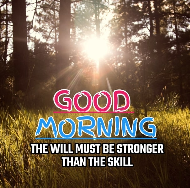 Best Good Morning Images HD Free Download 100