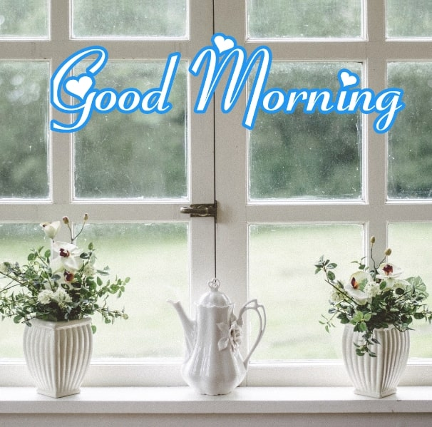 Best Good Morning Images HD Free Download 104