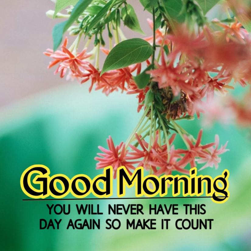Best Good Morning Images HD Free Download 51