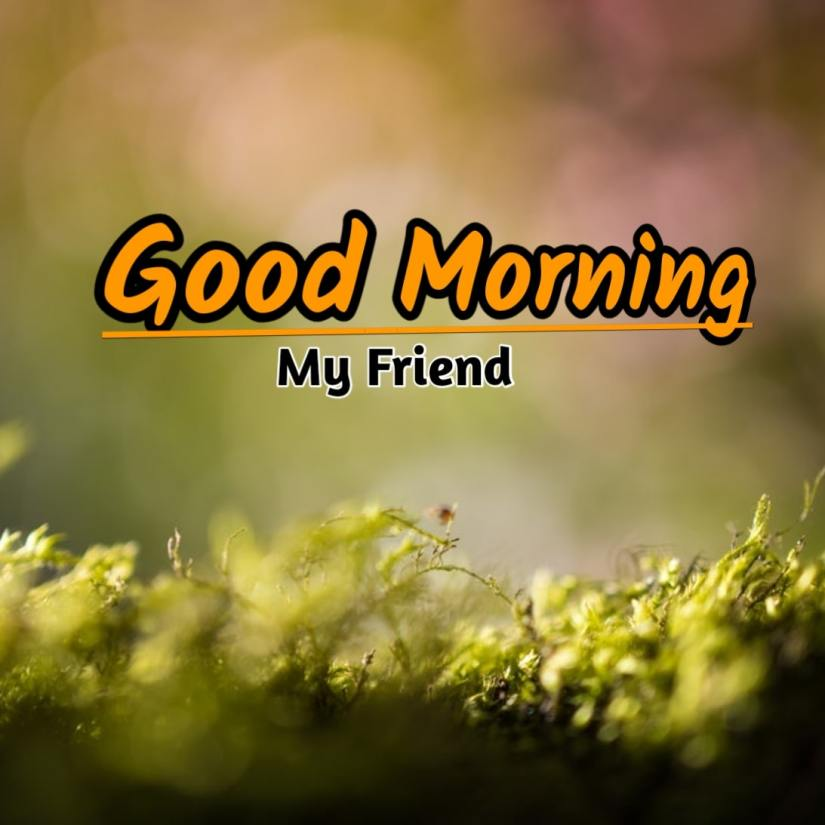 Best Good Morning Images HD Free Download 53