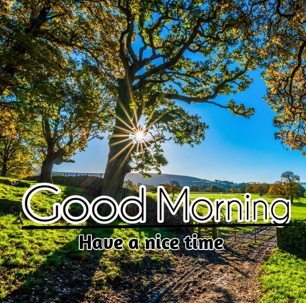 Best Good Morning Images HD Free Download 59