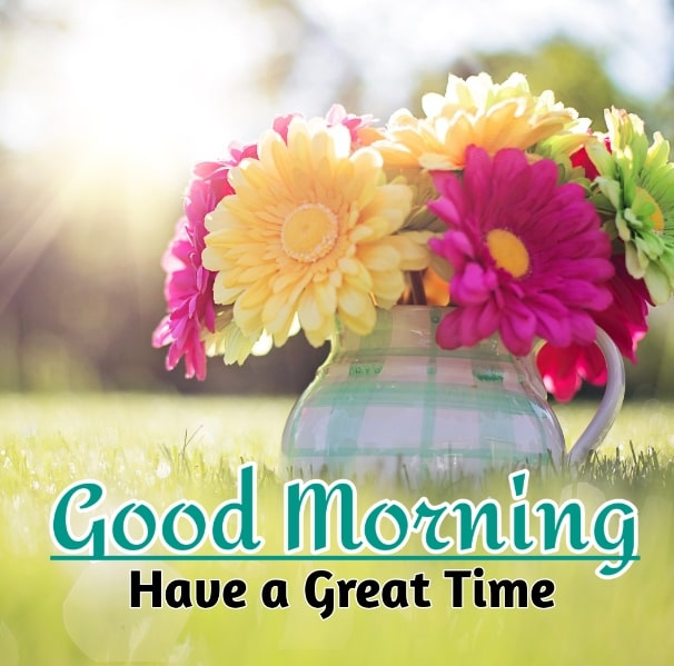 Best Good Morning Images HD Free Download 64