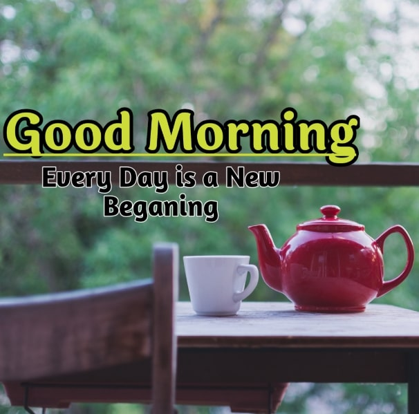 Best Good Morning Images HD Free Download 66
