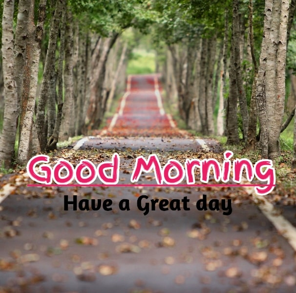 Best Good Morning Images HD Free Download 68