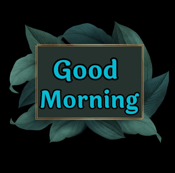Best Good Morning Images HD Free Download 70