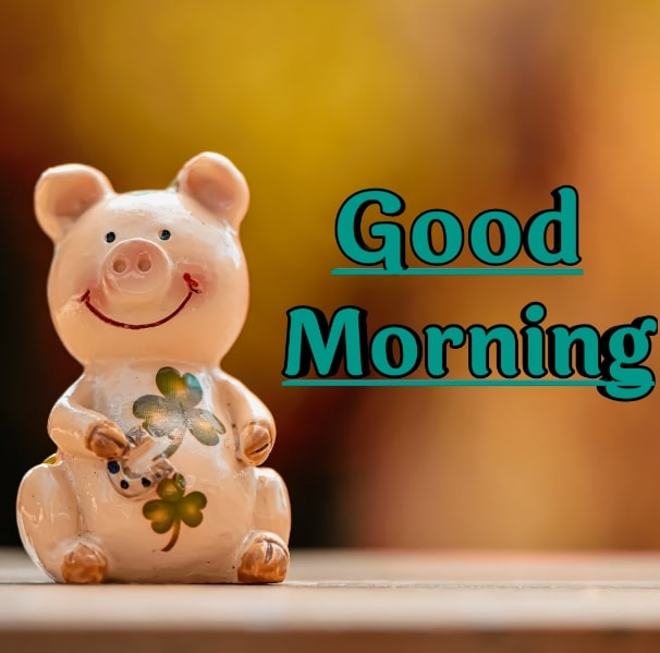 Best Good Morning Images HD Free Download 72