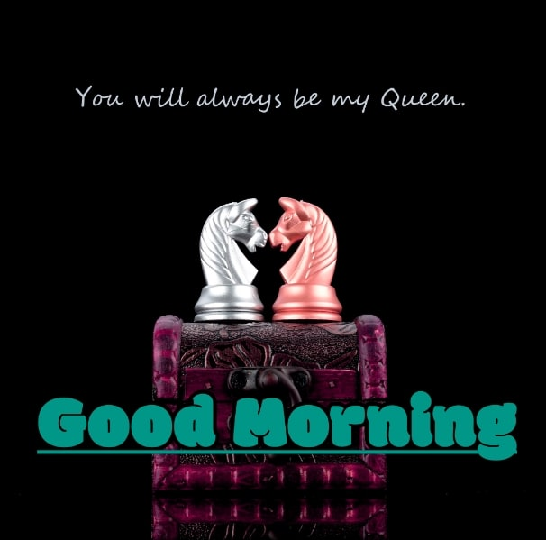 Best Good Morning Images HD Free Download 79