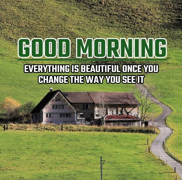 Best Good Morning Images HD Free Download 96