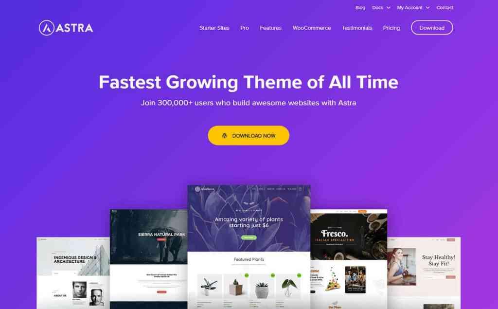 eCommerce Website Ke Liye Astra Theme Kyun Select Karen6