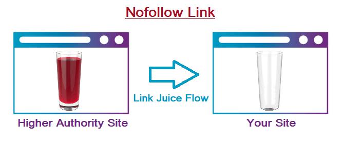 NoFollow Link1