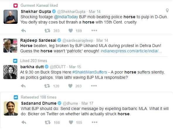 Injured Horse Media Bigshots