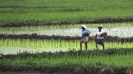 agriculture-rural-development
