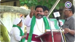 Mosquitoes DMK Bishop