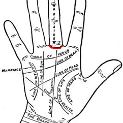 Palmistry Diagram Marriage Line Oil Furnace Thermostat Wiring Palmistry, Palm Reading Chart - Hand Lines Ring Of Saturn, Astrology ...
