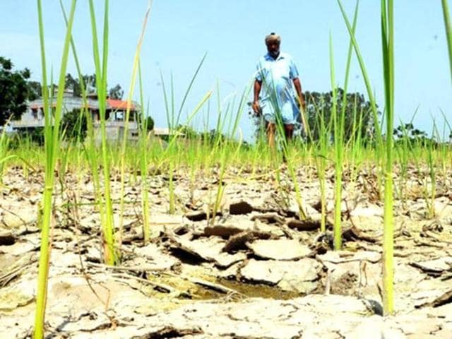 Monsoon Season Stuck In Kerala - Telugu States Might Be Hit With Drought And Famine