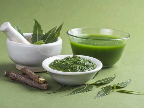 Neem plant extract can reduce prostate tumour by up to 70