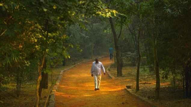 Image result for sanjay van