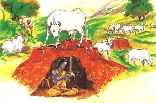 Lord Venkateswara Cow offering Milk