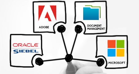 AEC Project Management Siebel Systems Integration