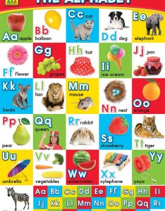 School zone wall chart the alphabet also charts educational rh hinkler