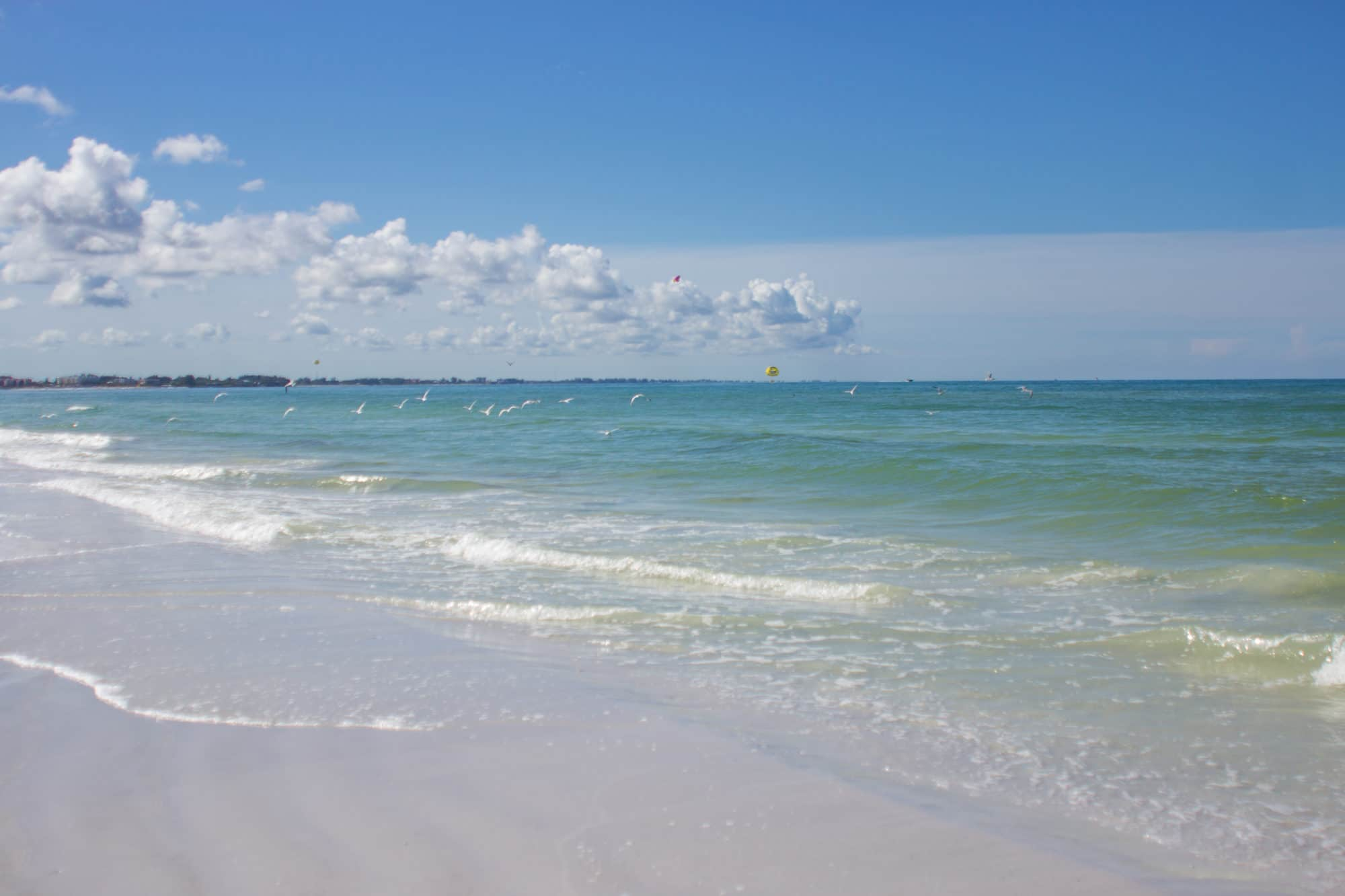 siesta key beach by siesta key photographers
