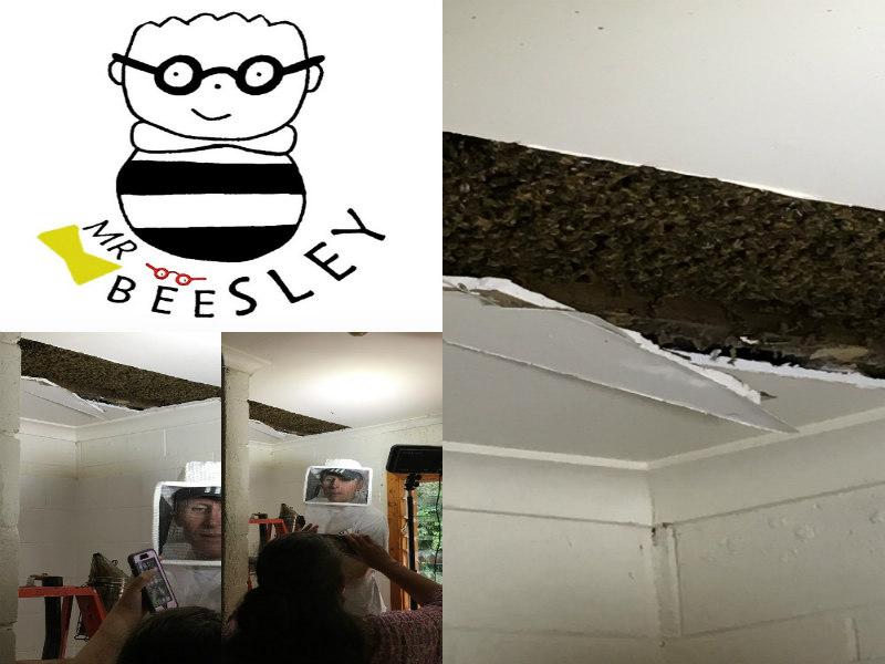 Monster Beehive