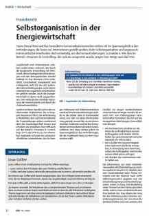 Selbstorganisation in der Energiewirtschaft