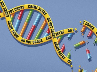 DNA Kriege
