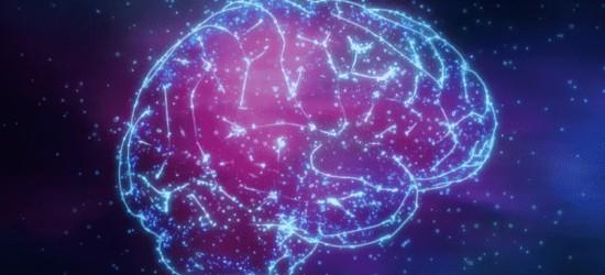 Magneto-Protein: Genetisch entwickelt, um Gehirne und Verhalten zu kontrollieren