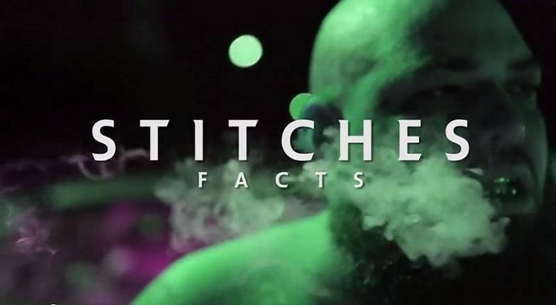 Factsstitchesvid