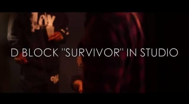 Survivorinstudiovid