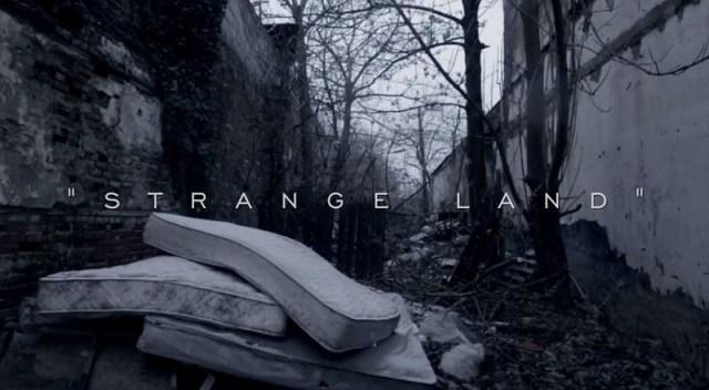 Strangelandvid