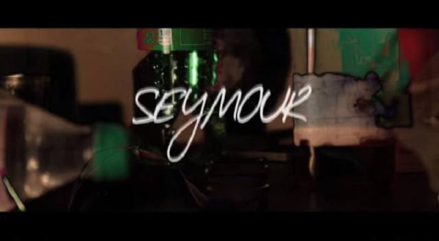 Seymourvid