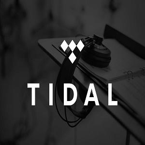 Tidal 6