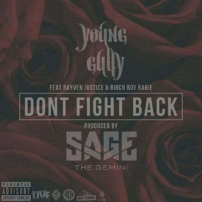 dont-fight-back