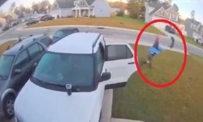 NC man throws bobcat after attack