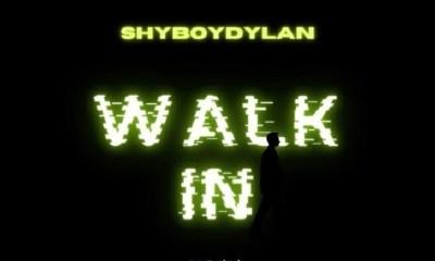 shyboydylan Walk In