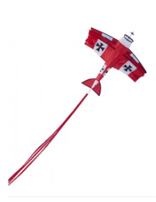 vliegtuig vlieger