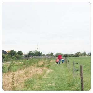 farmcamps mariekerke wei