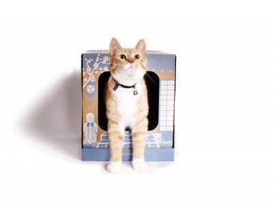 Poopy Cat Litter Box - cat3