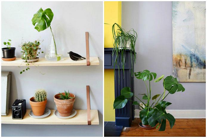 birgit-woonkamer-planten-schouw