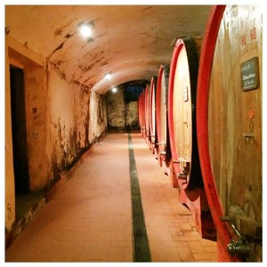 wijnvaten toscane glamping