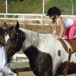 Waar moet je aan denken als je kind op paardrijden wil