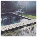 Een natuurlijke zwemvijver in je tuin